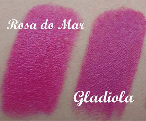 rosa-do-mar-gladiola